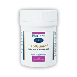 Folguard_main