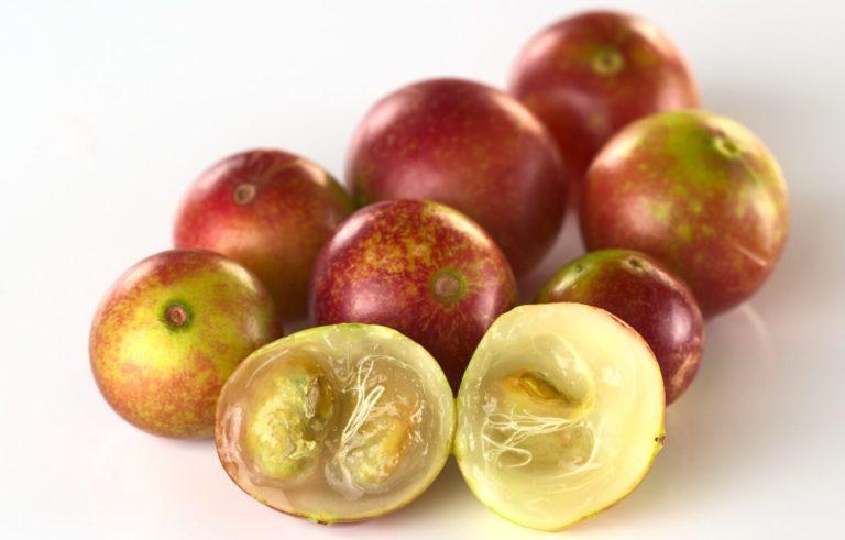 Camu camu – vitaminbomben från Amazonas