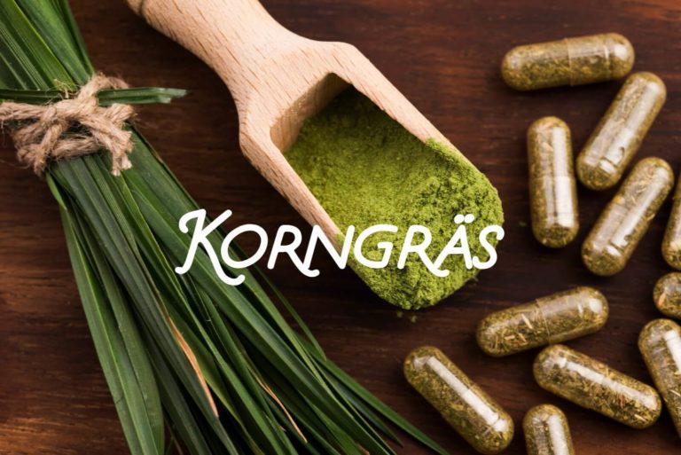 Korngräs – en grön detoxkur