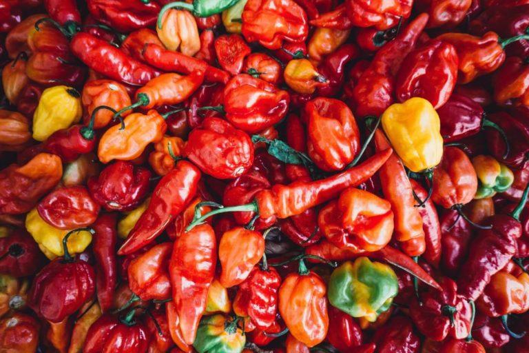 Chili – här är alla hälsofördelar